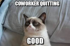 Quitting Meme - coworker quitting grumpy cat bed meme on memegen