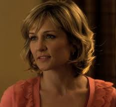 amy carlson hairstyles on blue bloods blue bloods danny reagan this is your wife tv columnist