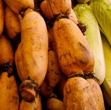 Chinese Root Vegetables - chinese and asian vegetables commonly used in soups