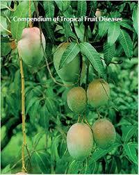Tropical Plant Diseases - amazon com compendium of tropical fruit diseases the disease