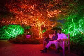 Botanical Gardens Atlanta Lights Awesome Atlanta Botanical Garden Lights Home Inspiration