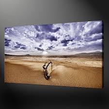 beach log canvas wall art pictures prints variety of sizes free uk