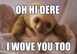 Sloth Meme Pictures - baby sloth memes quickmeme
