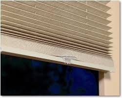 Pleated Blinds Hunter Douglas Brilliance Pleated Shades With Literise Cordless