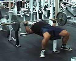 bench routines ultimate fitness workout routines