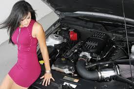 mustang intake manifold 2011 2014 mustang gt 302r intake manifold m 9424 m50br