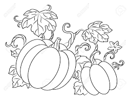 pumpkin harvest drawing in retro style for thanksgiving design