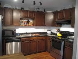 staining oak kitchen cabinets best home decor