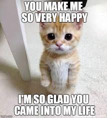 Be Happy Memes - cute cat meme imgflip