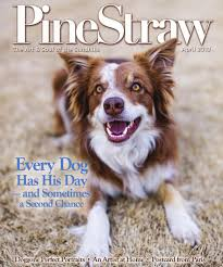 australian shepherd ugly stage april 2013 pinestraw by pinestraw magazine issuu