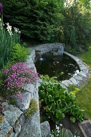 12 best pond design images on pinterest garden ideas pond ideas