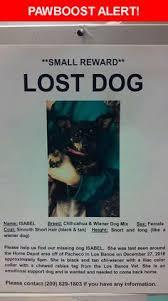 please spread the word girlie was last seen in tucson az 85705