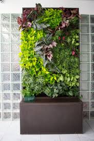 Wall Garden Ideas by Plant Stand Garden Wall Plant Holders Indoor Herbs Gardening
