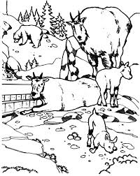 national zoo mountain goat coloring pages color luna