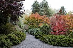 Bellevue Botanical Garden Lights Bellevue Botanical Garden Celebrates 25 Years Of Amazing Plants