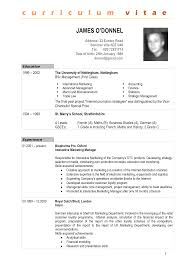 Sample Resume For Document Controller by 100 Curriculum Vitae Sample Word Doc Appealing Professional