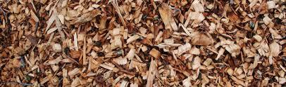 using wood chips in the vegetable garden melinda myers