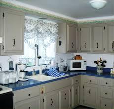 Diy Kitchen Cabinets Makeover Maple Diy Kitchen Cabinet Makeover U2014 Desjar Interior Diy Kitchen