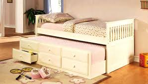 Bunk Bed With Pull Out Bed Double Bunk Bed With Slide 4 Great Ideas For Toddlers