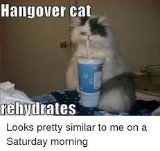 Hangover Meme - 25 best memes about hangover hangover memes