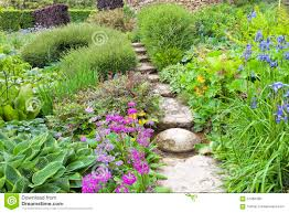 summertime lush cottage garden with stone path stock photo image