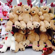 valentines day bears fluffy for valentines day on the hunt