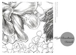 sketch flowers wallpaper black and white poetry floral wall