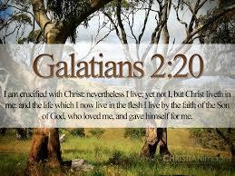 download hd christmas bible verse greetings card u0026 wallpapers free