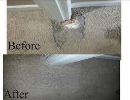 Dallas Carpet Repair Best 25 Laying Carpet Ideas On Pinterest Dark Walnut Floors