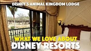 disney u0027s animal kingdom lodge information u0026 questions page 182