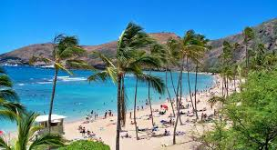 7 days hawaii honeymoon package honeymoon in hawaii