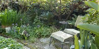 native plants in claremont garden design claremont garden club