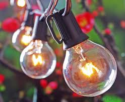 buy 25 foot g40 outdoor lighting patio globe string lights green