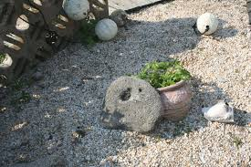 zen gardens xeriscaping and willets skinny island post