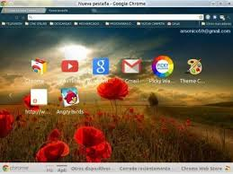 theme google chrome rabbit 114 best technology google chrome theme s and tip s images