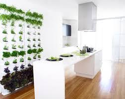 indoor wall garden vertical home gardens modular stacking green wall system