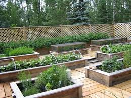 raised bed vegetable garden design and this raised bed garden