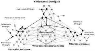 Define Cortical Blindness Frontiers From Cortical Blindness To Conscious Visual Perception