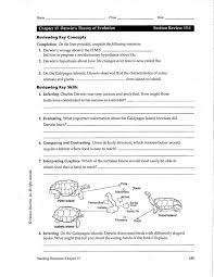 evolution worksheets free worksheets library download and print