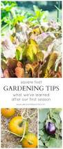 Square Foot Square Foot Gardening Tips What We U0027ve Learned After The First
