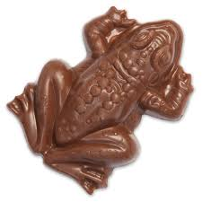 where to buy chocolate frogs harry potter milk chocolate frog