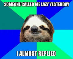 Lazy Meme - 35 funniest lazy meme pictures that will make you laugh