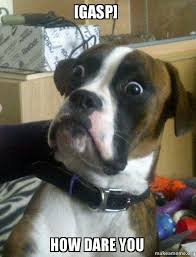 Gasp Meme - gasp how dare you skeptical dog make a meme