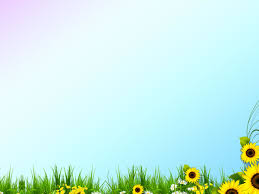 attractive templates for ppt free beautiful spring template backgrounds for powerpoint nature