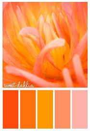 56 best colors images on pinterest colors color palettes and