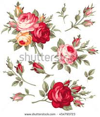 Picture Of Roses Flowers - rose flower stock images royalty free images u0026 vectors shutterstock