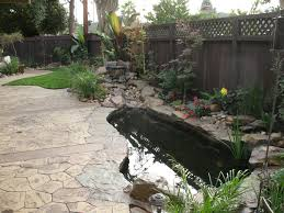 Waterfalls In Backyard Ponds by Side Yard Koi Pond With Creek Style Waterfall And Edged In Cabinet