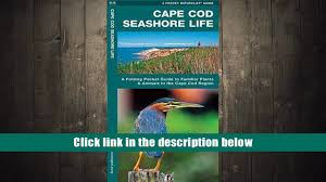 favorite book cape cod seashore life a folding pocket guide to
