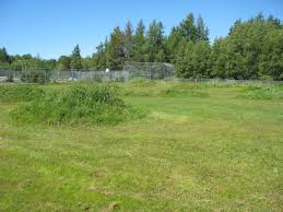 backyard rc track building tips sackville rc