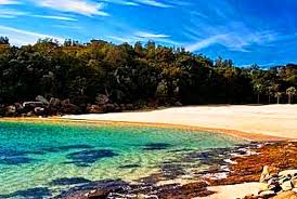 Best Beaches In World Best Beaches In Sydney Grab Fun With Travel